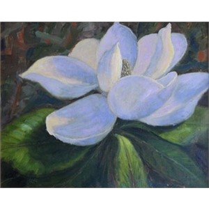 Magnolia Splendor