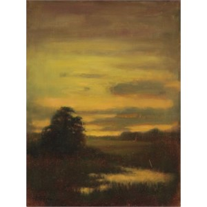 Marsh Sublime