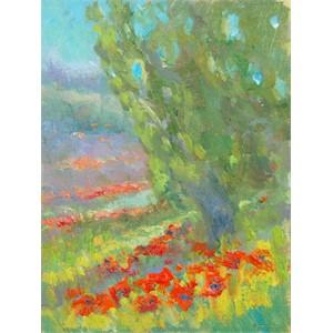 Poppy Fields in Tuscany