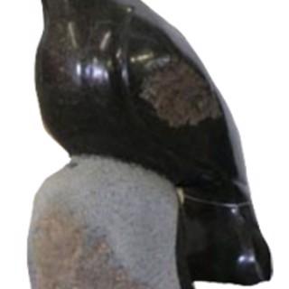 T.P. Nehumba - African (Shona)