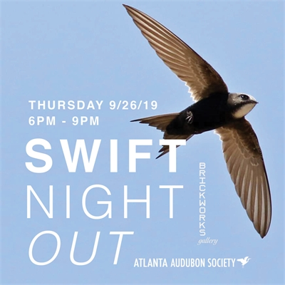 Swift Night Out