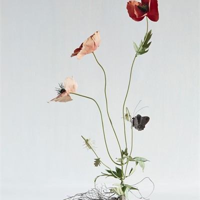 Wildflowers: Tole Sculptures By Carmen Almon