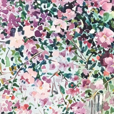 Mountain Gardens: Connie Johnson