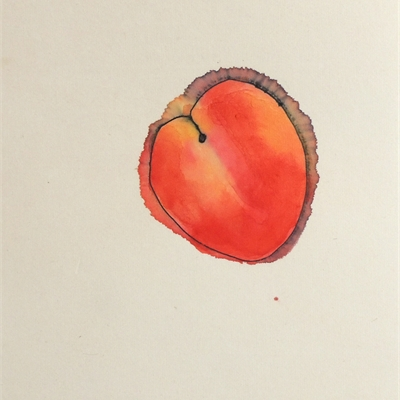 Alan Lau | Farmer's Market/Harvesting Peaches From the Other Planet