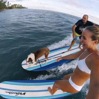 Ronaldo Macedo - Surf, Fish, Paint!