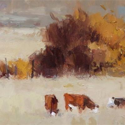 Kate Kiesler's Colorado