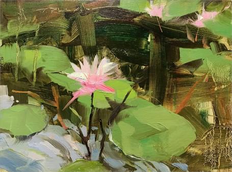 Lili Blossom