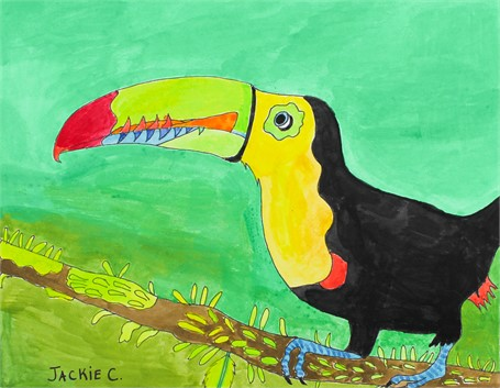 Toucan Tropical Bird (FRAMED)