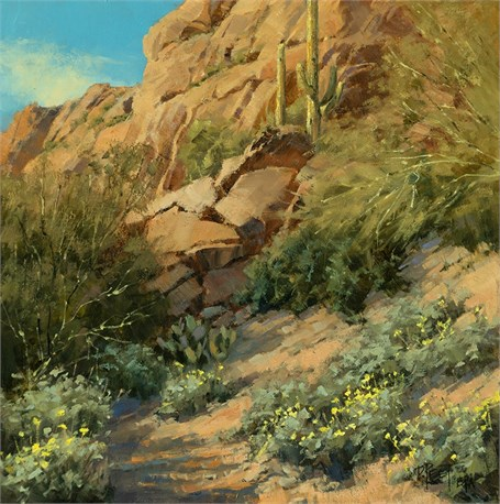 Canyon Brittle Bush