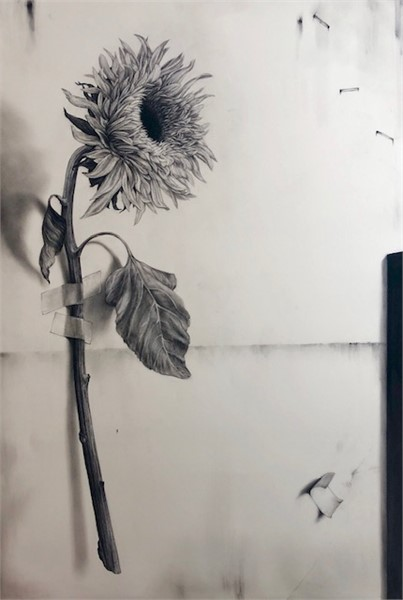 Sunflower with Tape
