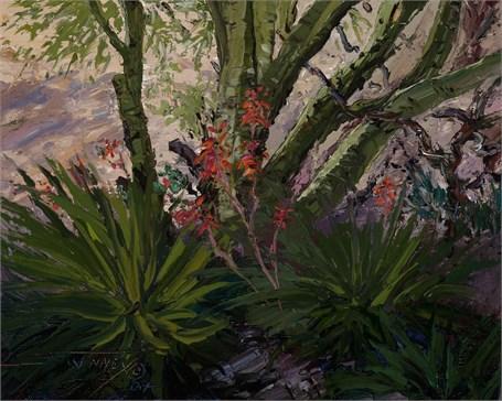 Palos & Aloes