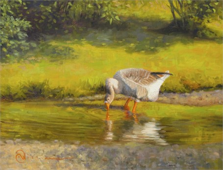 "Abbie Williams | Goose Taking a Gander | Oil | 14"" X 18"" 