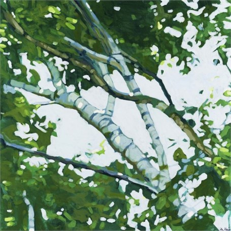 "Liz Hoag | Up in the Birches 2 | Acrylic | 24"" X 24"" 