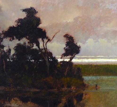 Twilight, Grass