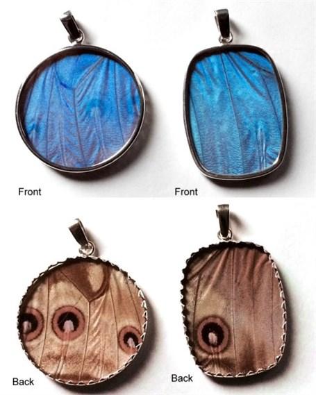 Pendant, Blue Morpho Butterfly Wing, Lg