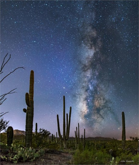 Milky Way Over - Saguaro National Park Tucson, Arizona - Drop Shipping Available