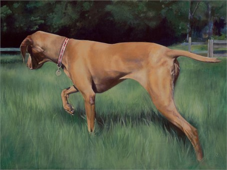 "Gloria Najecki | Lucy in the Field | Acrylic on Linen on Panel | 18"" X 24"" 