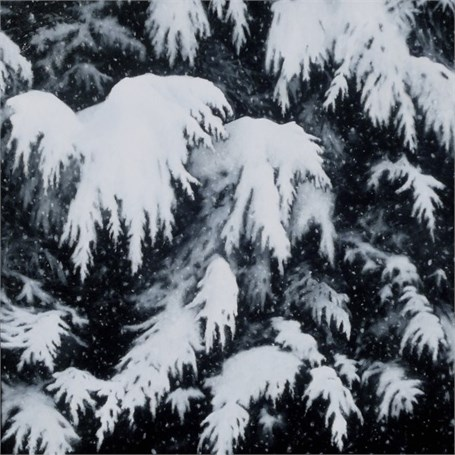 "Alex Dunwoodie | Hemlocks, Heavy Snow | Oil | 8"" X 8"" 