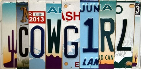Lost License Plate - Cowgirl