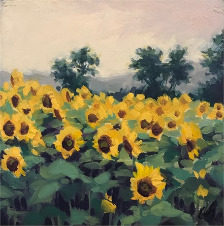 Sunflower Study I