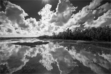 John's Island Tidal Flat