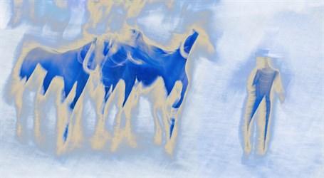 Blue Harmony AP