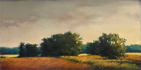 "Margaret Gerding | Golden Fields | Oil on Panel | 12"" X 24"" 