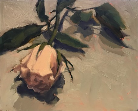 "Margaret Gerding | Day 17 (Rose) | Oil on Panel | 8"" X 10"" 