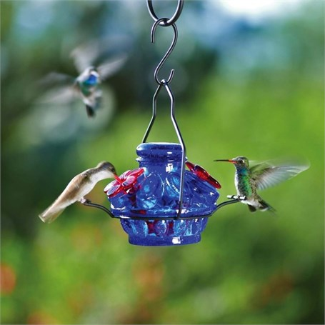 Hummingbird Feeder - 6oz Pot De Creme Blue