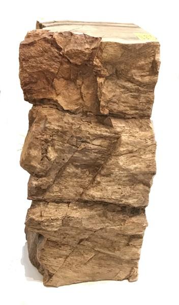 Rock Pedestal - Petrified Wood - JO#17