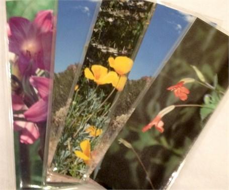 Bookmark - Assorted Images of Arizona