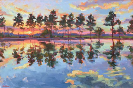 Lowcountry Reflection