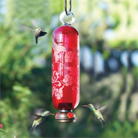 Hummingbird Feeder - 16oz Filigree Hummingbird in Red