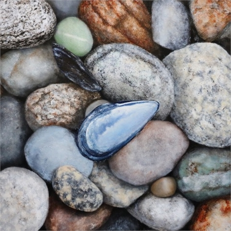 "Alex Dunwoodie | Mussel Shells on Stones | Oil on Board | 8"" X 8"" 