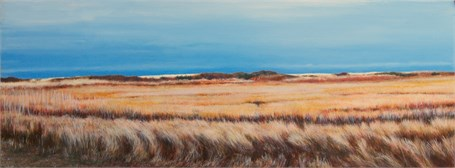 Marsh Dunes, Late Fall Afternoon