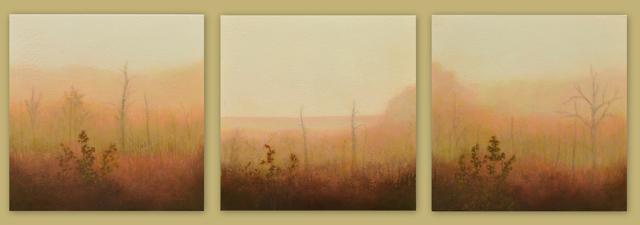 Jill Valliere   Behind the Veil - Triptych (3- 12
