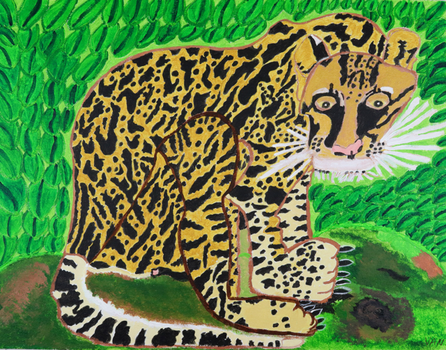 Ocelot from South America (FRAMED)