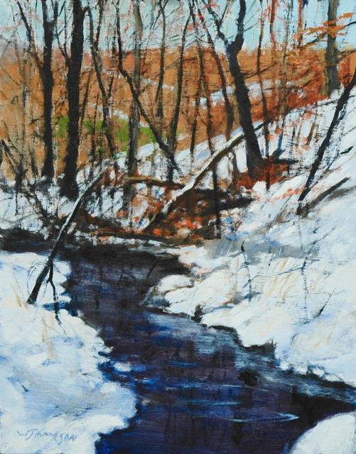 Fresh Snow in the Piedmont