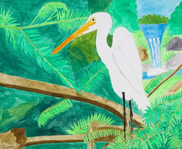 Tropical Bird