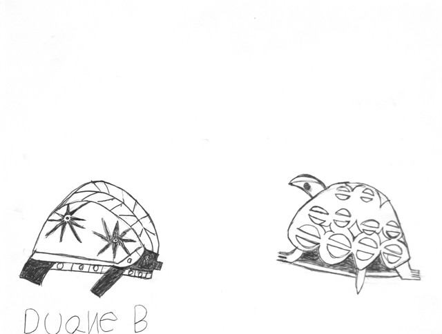 2 Designer Turtles