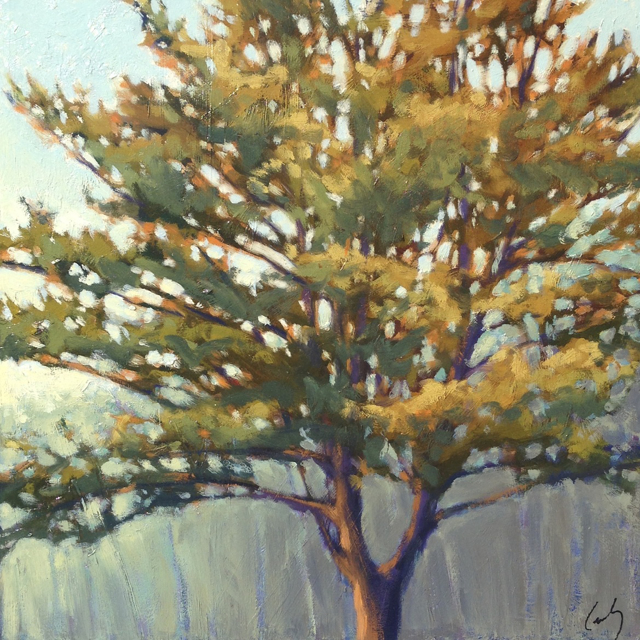 "Margaret Gerding | Single Pine I | Oil on Panel | 16"" X 16"" 