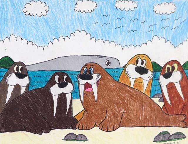 Fantastic Walrus Island