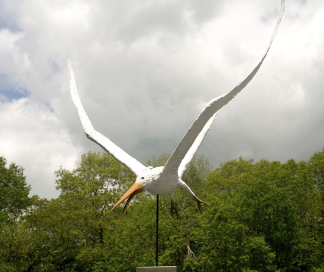 "James Rivington Pyne | Tern | Composite | 29"" X 28"" 