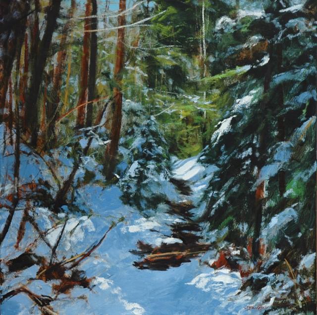 Roan Mountain Snowdrift