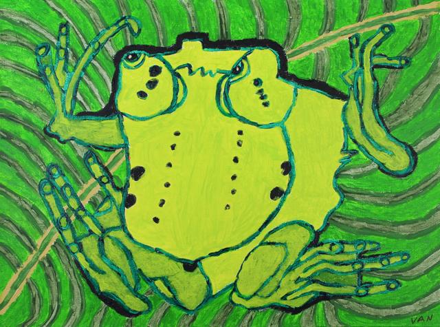 The New Species Surinan Toad