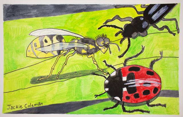 Ladybug Meets Friends