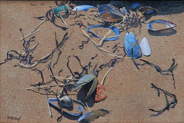 "William B. Hoyt | Shells and Seaweed | Oil on Panel | 8"" X 12"" 