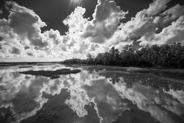 Johns Island Tidal Flat