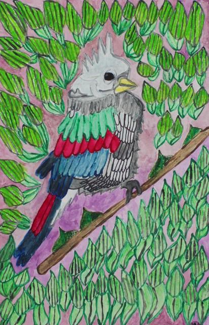 Bird in Rainforest (FRAMED)