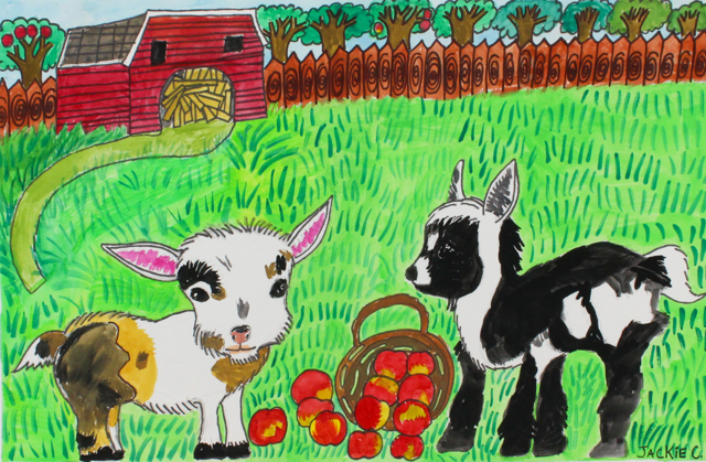 Baby Goats Eating Apples (FRAMED)